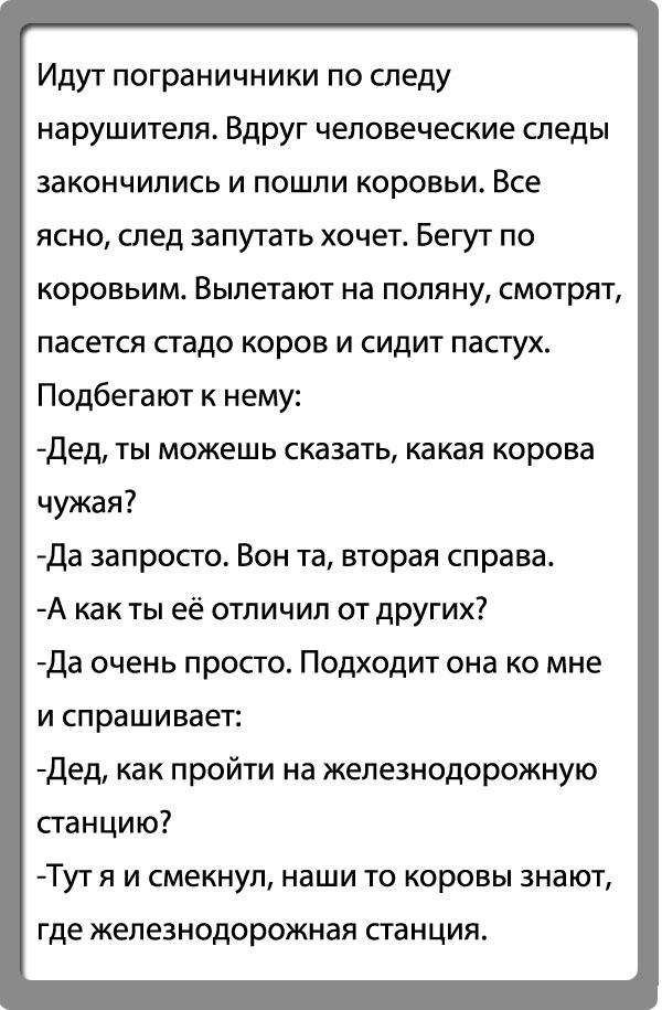 Анекдоты Про Волка И Осла Видео