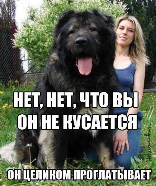 XglpcBWBTvA