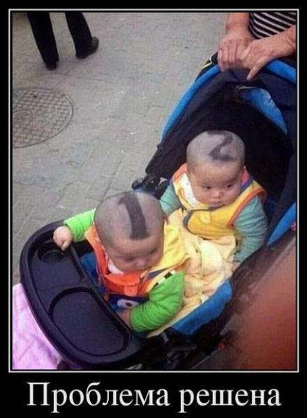 """Демотеватор """"Разметка близнецов"""""""