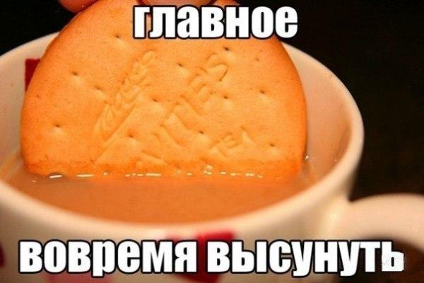 """Смешное фото """"Чай с печеньками"""""""