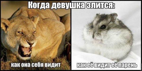 t1PU_Bvfyo0