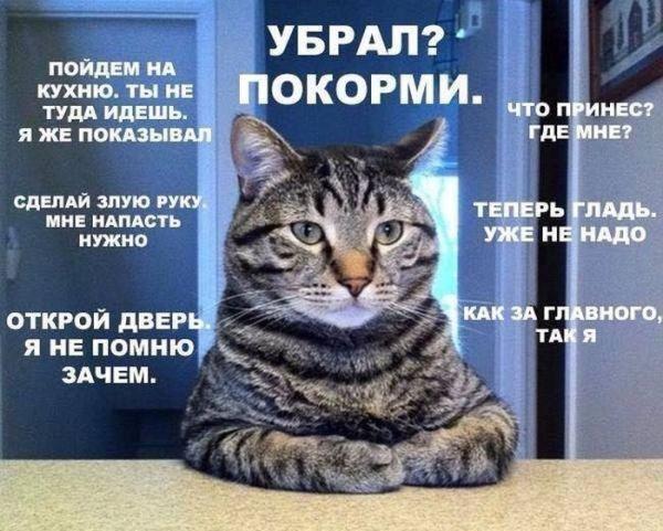 podborka_84