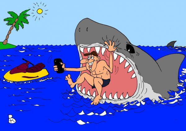 """Смешное фото """"Селфи с акулой"""""""