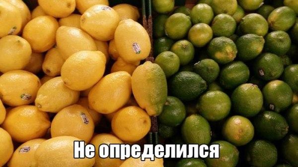 _qifRY4fZNk