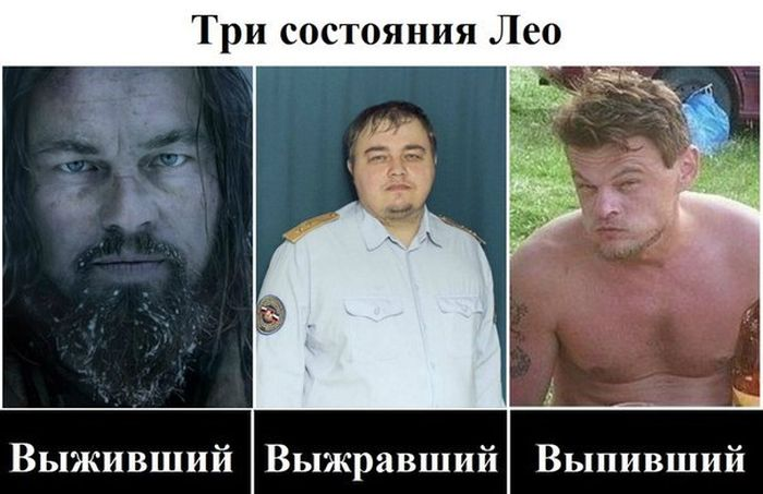Смешное фото Три состояния Лео