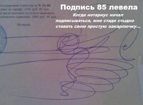 Смешное фото Подпись 85 левела