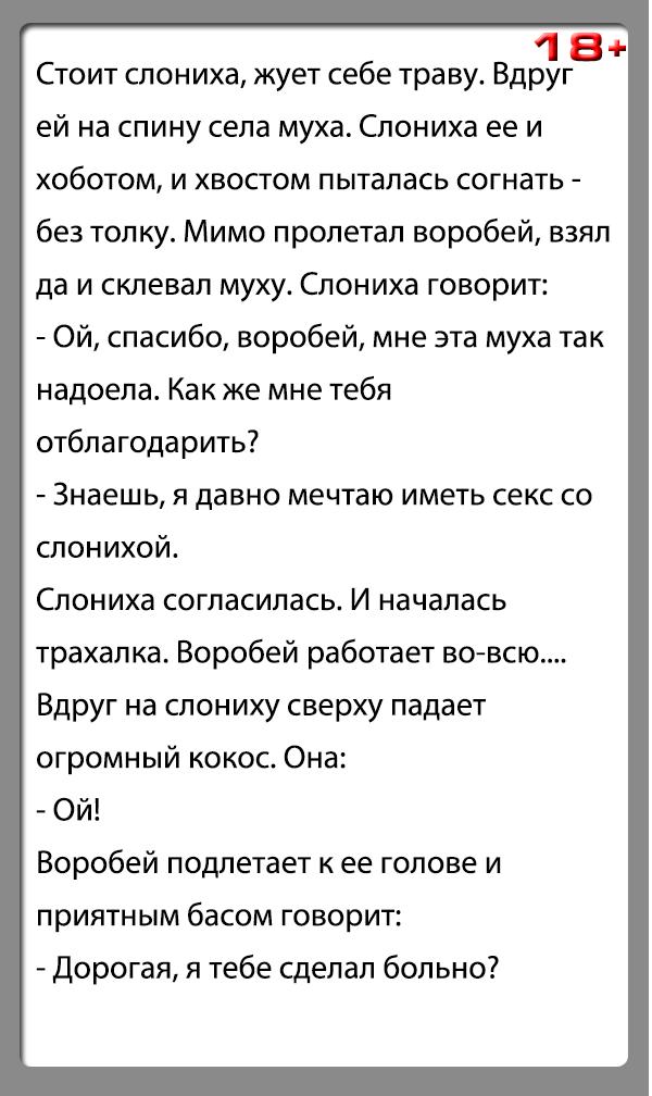 """Анекдот """"Слониха и воробей"""""""
