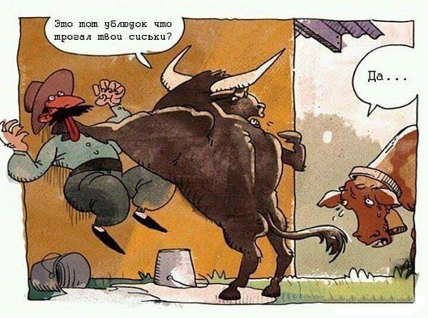 Ревнивый бык