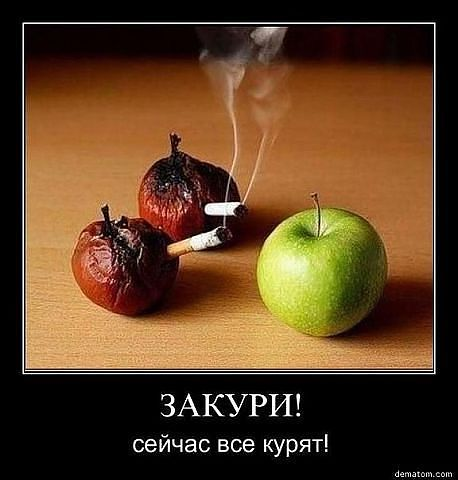 все курят