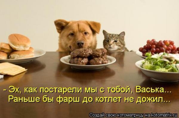 smeshnie_kartinki_136686672825042013287