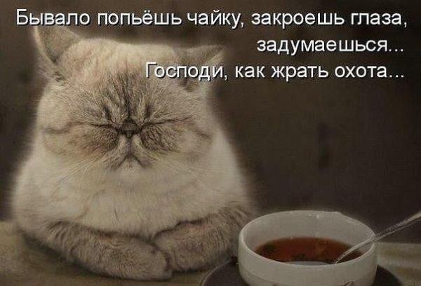 smeshnie_kartinki_1367234066290420132738