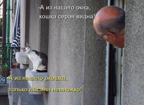 smeshnie_kartinki_136783558006052013934