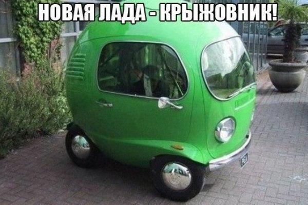 ZYWMSYyVqe8
