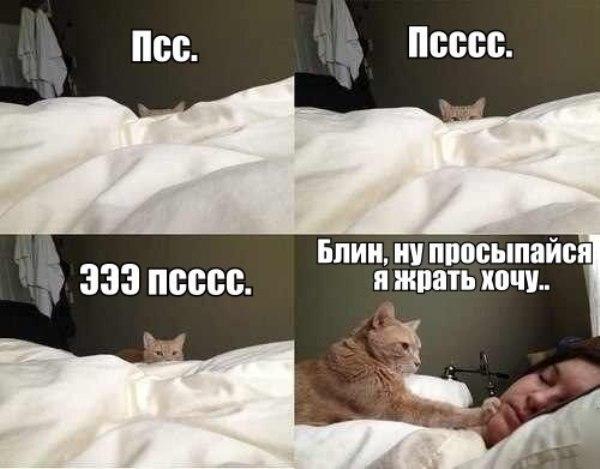 A0ugvDixqvY