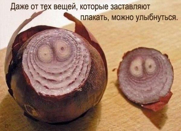 Смешное фото Всегда можно найти повод для улыбки