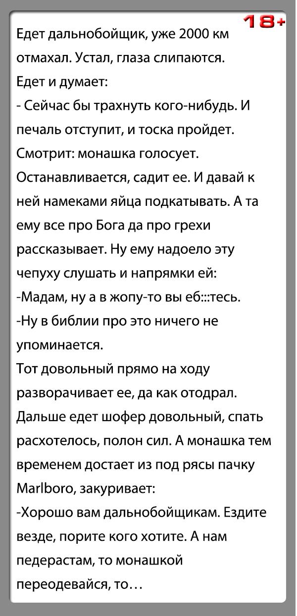 """Анекдот """"Дальнобойщик и монашка"""""""